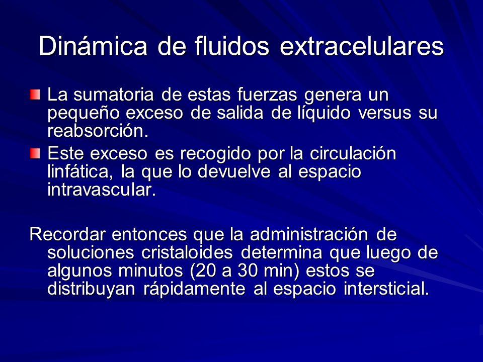 Dinámica de fluidos extracelulares La sumatoria de estas fuerzas genera un pequeño exceso de salida de líquido versus su reabsorción. Este exceso es r