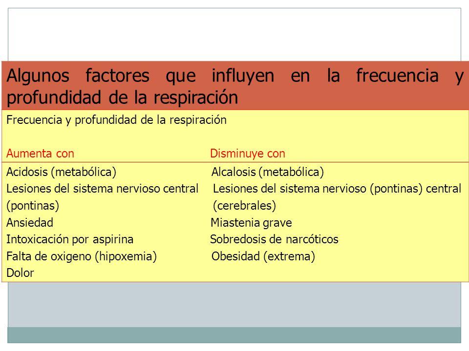 22 Algunos factores que influyen en la frecuencia y profundidad de la respiración Frecuencia y profundidad de la respiración Aumenta con Disminuye con