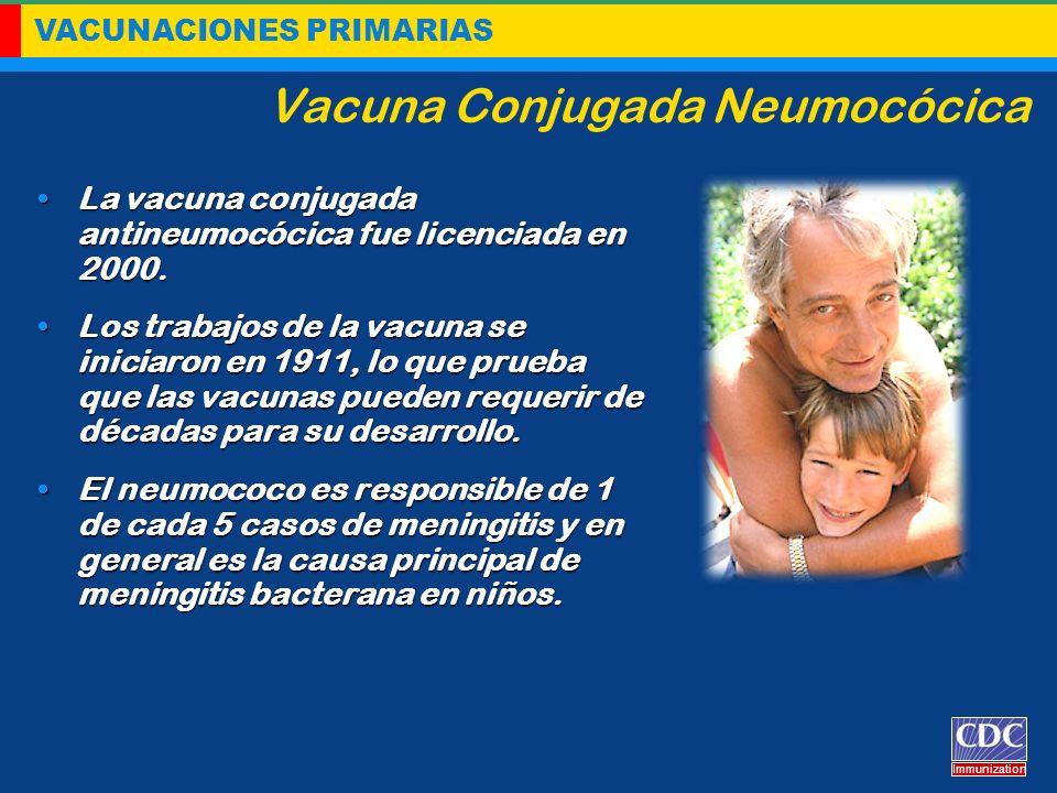 VACUNACIONES PRIMARIAS Immunization Vacuna Conjugada Neumocócica La vacuna conjugada antineumocócica fue licenciada en 2000.La vacuna conjugada antine