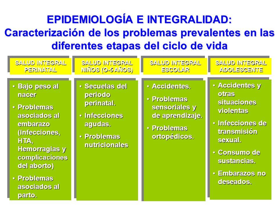 EPIDEMIOLOGÍA E INTEGRALIDAD: Caracterización de los problemas prevalentes en las diferentes etapas del ciclo de vida SALUD INTEGRAL PERINATAL PERINAT