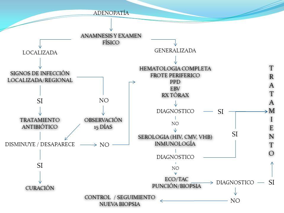 ADENOPATÍA ANAMNESIS Y EXAMEN FÍSICO LOCALIZADA GENERALIZADA SIGNOS DE INFECCIÓN LOCALIZADA/REGIONAL TRATAMIENTO ANTIBIÓTICO SI DISMINUYE / DESAPARECE