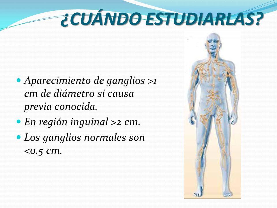 ¿Qué características deben tomarse en cuenta.Características del ganglio.