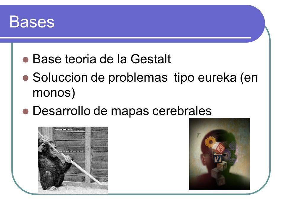 Bases Base teoria de la Gestalt Soluccion de problemas tipo eureka (en monos) Desarrollo de mapas cerebrales