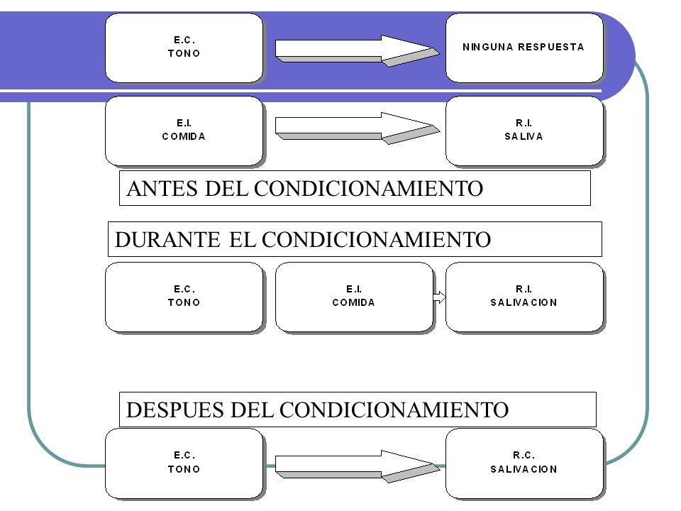 Aprendizaje cognitivo TOLMAN (1886-1959) KHOLER (1887, 1967) BANDURA (1927)