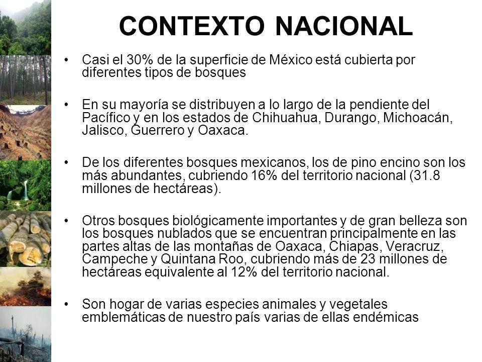 CONTEXTO NACIONAL Casi el 30% de la superficie de México está cubierta por diferentes tipos de bosques En su mayoría se distribuyen a lo largo de la p