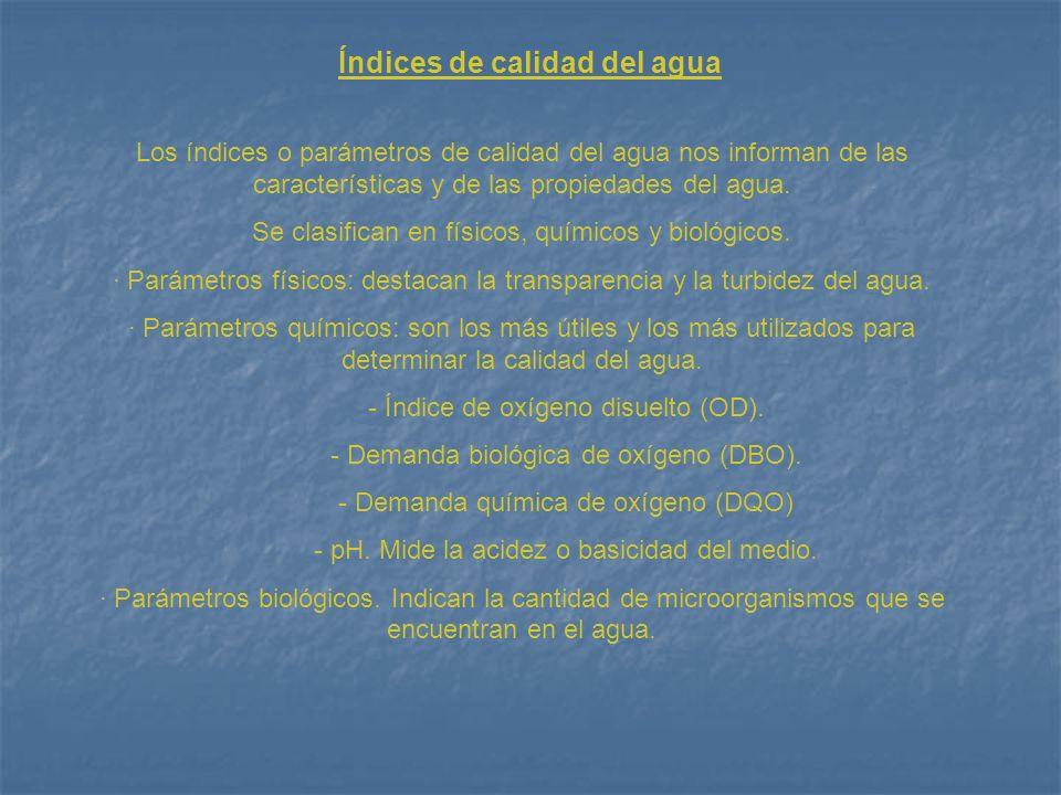 Índices de calidad del agua Los índices o parámetros de calidad del agua nos informan de las características y de las propiedades del agua. Se clasifi