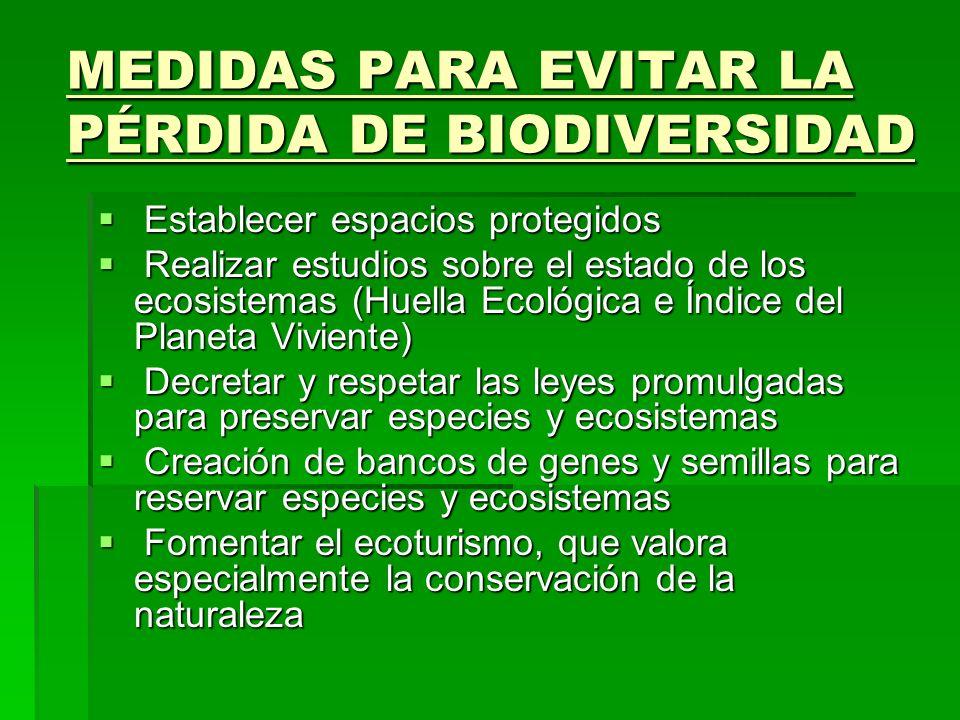 MEDIDAS PARA EVITAR LA PÉRDIDA DE BIODIVERSIDAD Establecer espacios protegidos Establecer espacios protegidos Realizar estudios sobre el estado de los