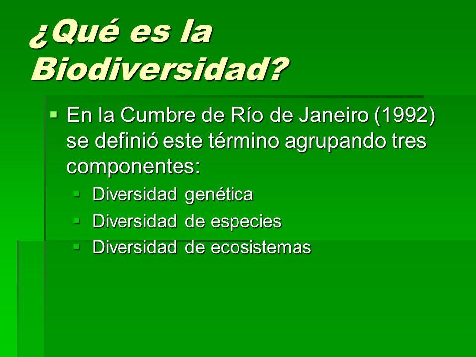 ¿Qué es la Biodiversidad? En la Cumbre de Río de Janeiro (1992) se definió este término agrupando tres componentes: En la Cumbre de Río de Janeiro (19