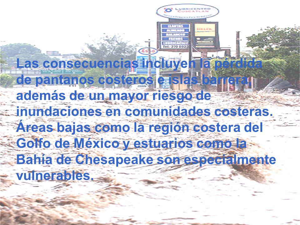 Las consecuencias incluyen la pérdida de pantanos costeros e islas barrera, además de un mayor riesgo de inundaciones en comunidades costeras. Áreas b
