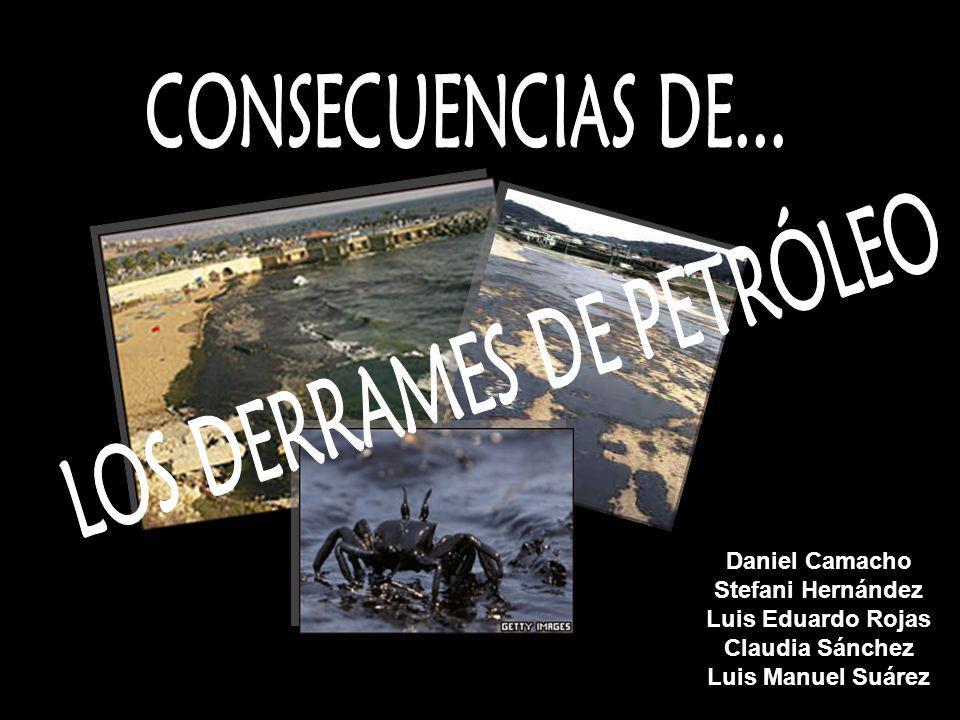 CONSECUENCIAS DE LO DERRAMES PETROLEROS DAÑOS A LA VIDA MARINA.