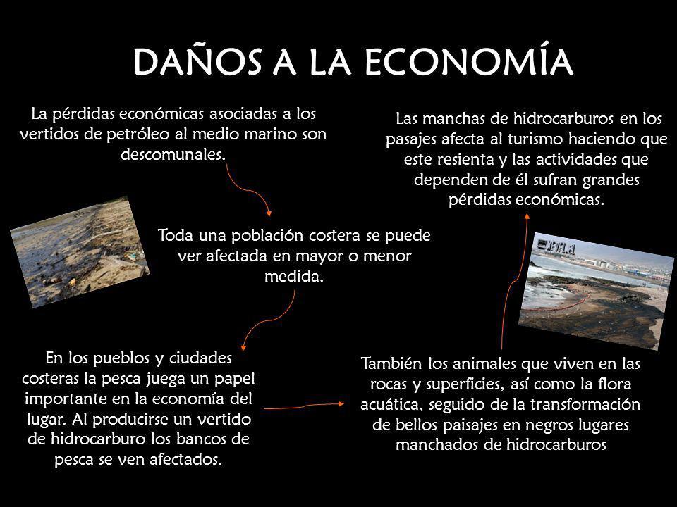 DAÑOS A LA ECONOMÍA La pérdidas económicas asociadas a los vertidos de petróleo al medio marino son descomunales. Toda una población costera se puede