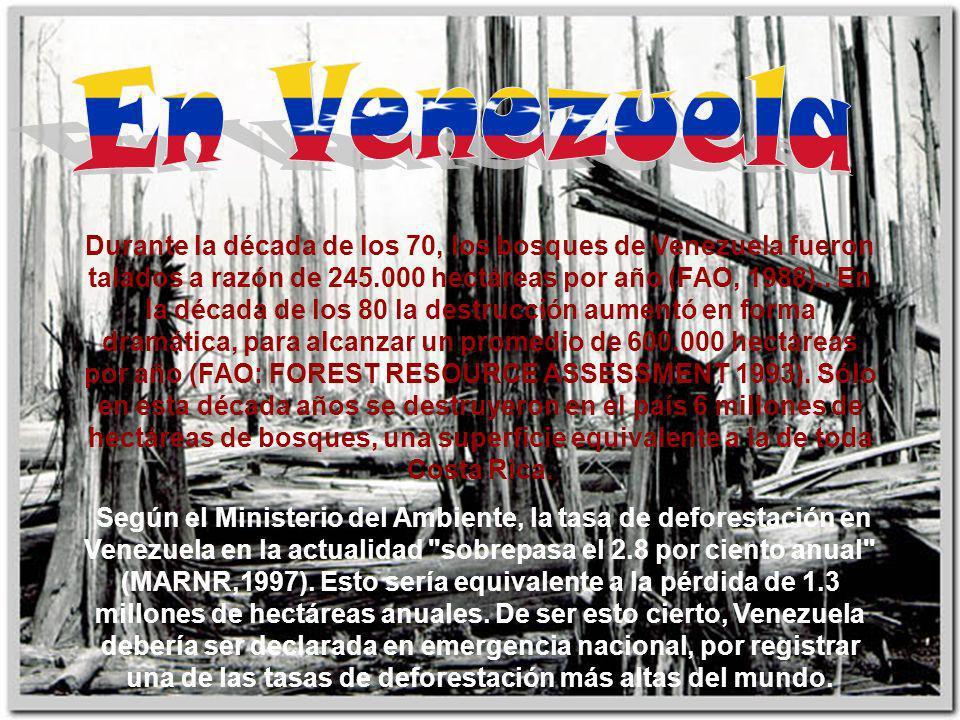 Durante la década de los 70, los bosques de Venezuela fueron talados a razón de 245.000 hectáreas por año (FAO, 1988).. En la década de los 80 la dest