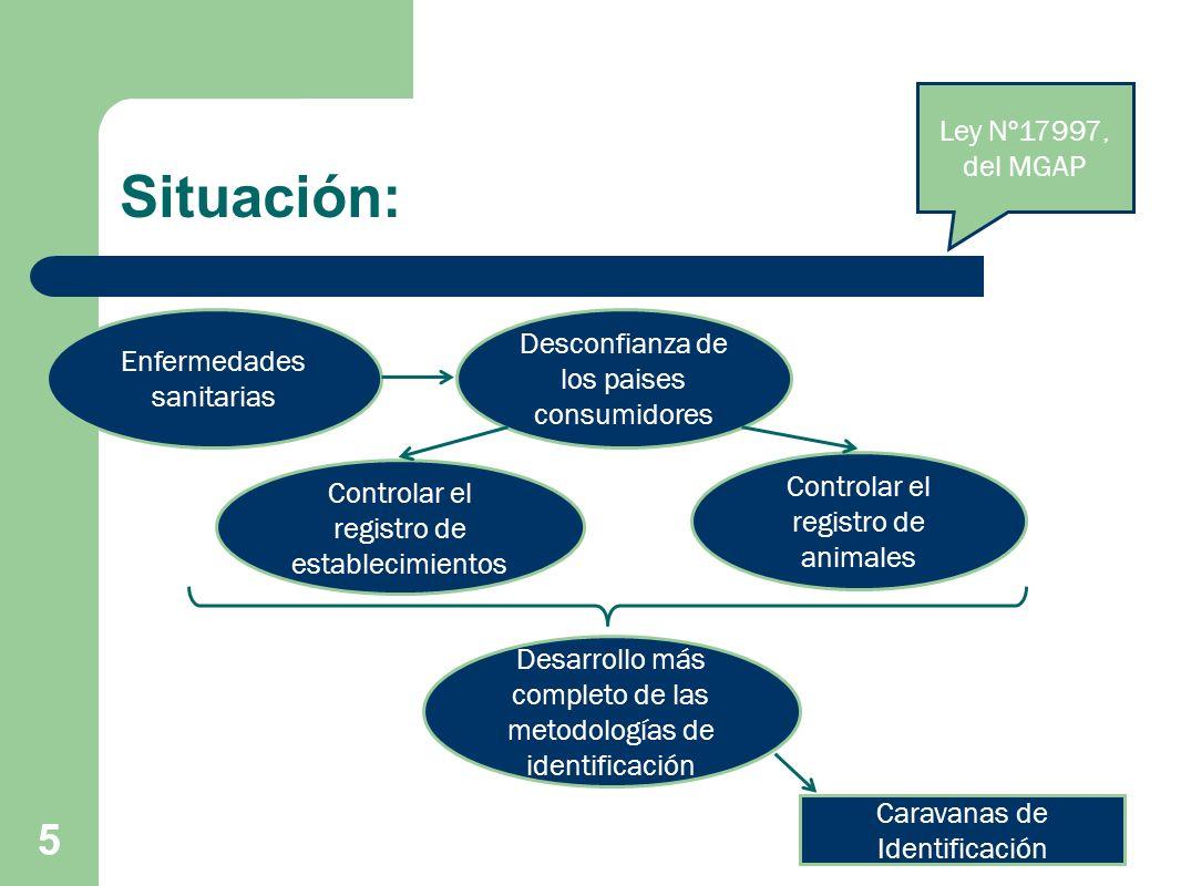 5 Controlar el registro de establecimientos Controlar el registro de animales Enfermedades sanitarias Desconfianza de los paises consumidores Desarrol
