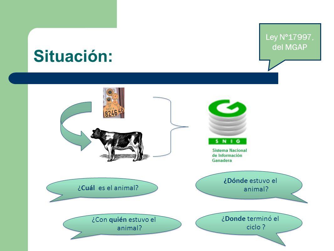 Situación: Ley Nº17997, del MGAP ¿Cuál es el animal? ¿Dónde estuvo el animal? ¿Con quién estuvo el animal? ¿Donde terminó el ciclo ?