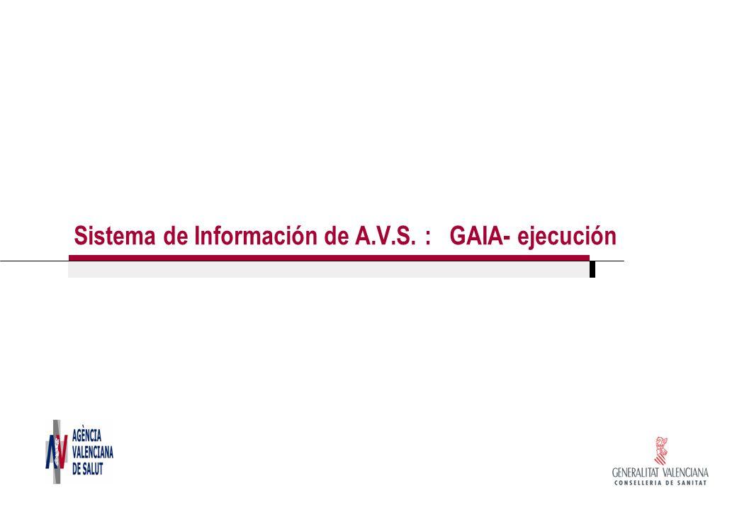 Sistema de Información de A.V.S. : GAIA- ejecución