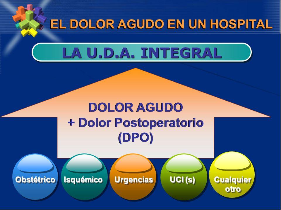 EL DOLOR AGUDO EN UN HOSPITAL LA U.D.A. INTEGRAL DOLOR AGUDO + Dolor Postoperatorio (DPO) DOLOR AGUDO + Dolor Postoperatorio (DPO) ObstétricoObstétric