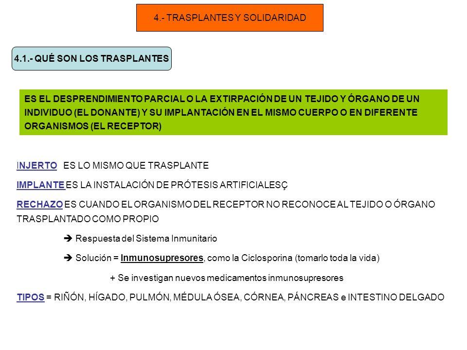 4.- TRASPLANTES Y SOLIDARIDAD 4.1.- QUÉ SON LOS TRASPLANTES ES EL DESPRENDIMIENTO PARCIAL O LA EXTIRPACIÓN DE UN TEJIDO Y ÓRGANO DE UN INDIVIDUO (EL DONANTE) Y SU IMPLANTACIÓN EN EL MISMO CUERPO O EN DIFERENTE ORGANISMOS (EL RECEPTOR) INJERTO ES LO MISMO QUE TRASPLANTE IMPLANTE ES LA INSTALACIÓN DE PRÓTESIS ARTIFICIALESÇ RECHAZO ES CUANDO EL ORGANISMO DEL RECEPTOR NO RECONOCE AL TEJIDO O ÓRGANO TRASPLANTADO COMO PROPIO Respuesta del Sistema Inmunitario Solución = Inmunosupresores, como la Ciclosporina (tomarlo toda la vida) + Se investigan nuevos medicamentos inmunosupresores TIPOS = RIÑÓN, HÍGADO, PULMÓN, MÉDULA ÓSEA, CÓRNEA, PÁNCREAS e INTESTINO DELGADO