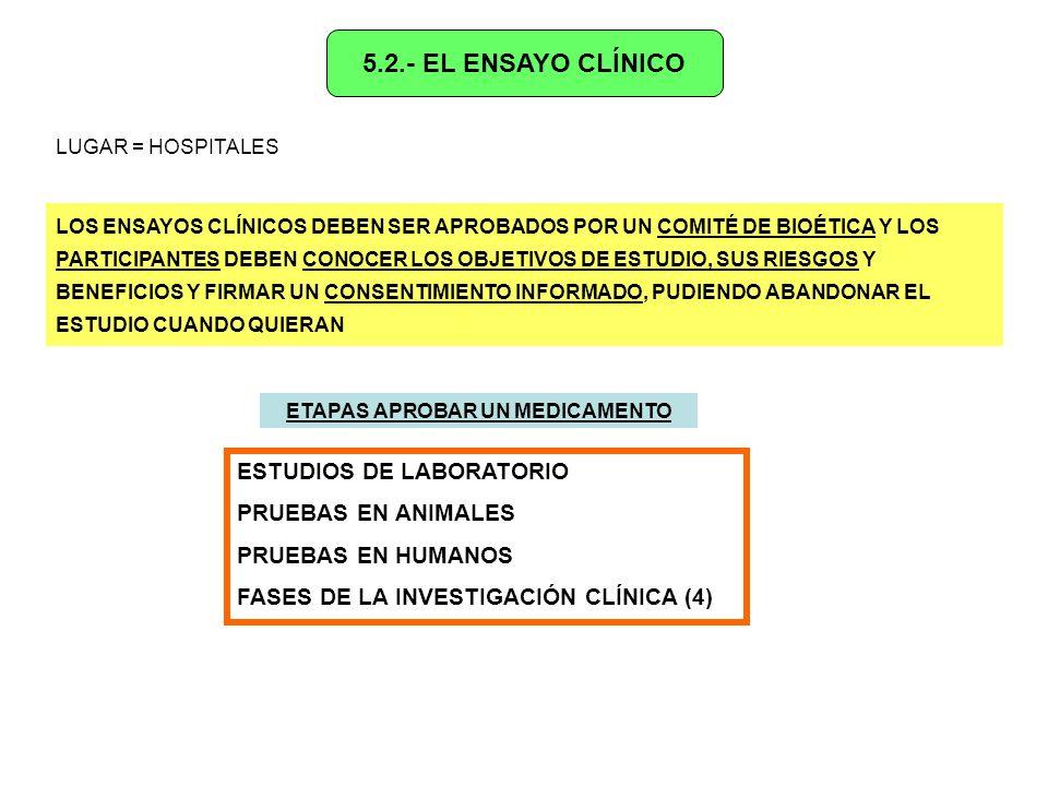 FASES DEL ENSAYO CLÍNICO 1.- PRIMERA FASE + GRUPO PEQUEÑO DE VOLUNTARIOS + SE AVERIGUA DOSIS QUE PRODUCEN RESPUESTA PROCESAMIENTO DEL MEDICAMENTO POR EL CUERPO POSIBLES EFECTOS TÓXICOS O INDESEADOS 2.- SEGUNDA FASE + GRUPO DE PACIENTES CON LA ENFERMEDAD + SE COMPRUEBA LOS EFECTOS POSITIVOS Y LOS SECUNDARIOS PELIGROSOS 3.- TERCERA FASE + GRUPO AMPLIO DE ENFERMOS + SE COMPARA MEDICAMENTO CON PLACEBO (SUSTANCIA INACTIVA) TÉCNICA DEL DOBLE CIEGO = ni paciente ni médico conocen quién recibe placebo/medicamento 4.- CUARTA FASE + SI LOS RESULTADOS SON BUENOS SE SOLICITA LA AUTORIZACIÓN PARA COMERCIALIZAR EL MEDICAMENTO + SISTEMA DE SEGUIMIENTO Y NOTIFICACIÓN DE POSIBLES EFECTOS ADVERSOS FARMACOVIGILANCIA