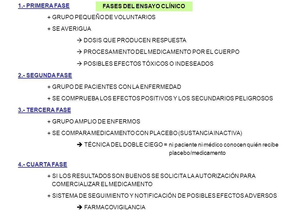 FASES DEL ENSAYO CLÍNICO 1.- PRIMERA FASE + GRUPO PEQUEÑO DE VOLUNTARIOS + SE AVERIGUA DOSIS QUE PRODUCEN RESPUESTA PROCESAMIENTO DEL MEDICAMENTO POR