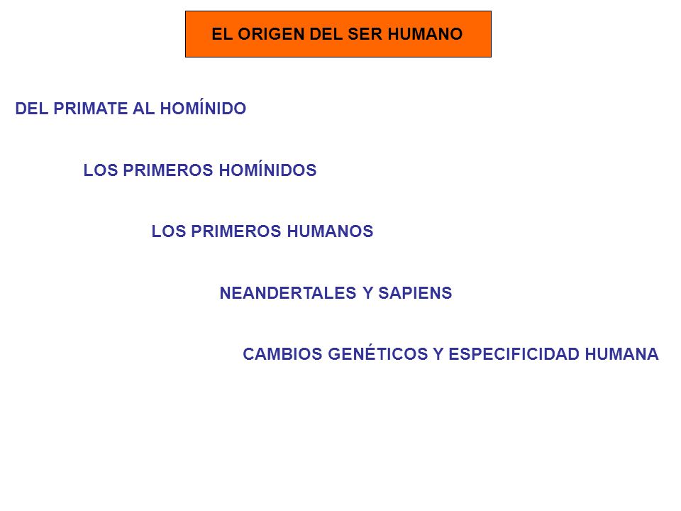 EL ORIGEN DEL SER HUMANO DEL PRIMATE AL HOMÍNIDO LOS PRIMEROS HOMÍNIDOS LOS PRIMEROS HUMANOS NEANDERTALES Y SAPIENS CAMBIOS GENÉTICOS Y ESPECIFICIDAD