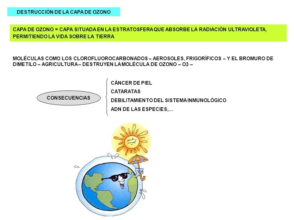 DESTRUCCIÓN DE LA CAPA DE OZONO CAPA DE OZONO = CAPA SITUADA EN LA ESTRATOSFERA QUE ABSORBE LA RADIACIÓN ULTRAVIOLETA, PERMITIENDO LA VIDA SOBRE LA TI