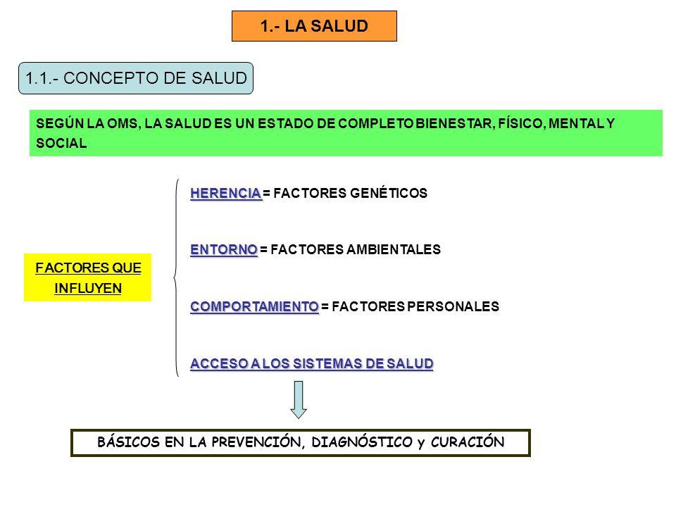 1.- LA SALUD 1.1.- CONCEPTO DE SALUD SEGÚN LA OMS, LA SALUD ES UN ESTADO DE COMPLETO BIENESTAR, FÍSICO, MENTAL Y SOCIAL FACTORES QUE INFLUYEN HERENCIA HERENCIA = FACTORES GENÉTICOS ENTORNO ENTORNO = FACTORES AMBIENTALES COMPORTAMIENTO COMPORTAMIENTO = FACTORES PERSONALES ACCESO A LOS SISTEMAS DE SALUD BÁSICOS EN LA PREVENCIÓN, DIAGNÓSTICO y CURACIÓN