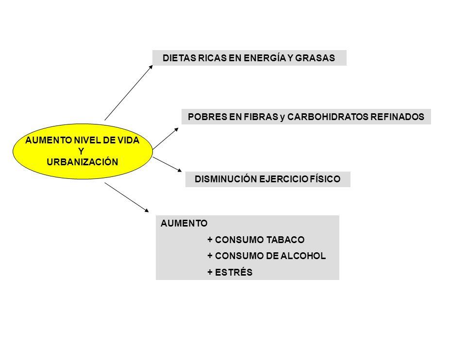 AUMENTO NIVEL DE VIDA Y URBANIZACIÓN DIETAS RICAS EN ENERGÍA Y GRASAS POBRES EN FIBRAS y CARBOHIDRATOS REFINADOS DISMINUCIÓN EJERCICIO FÍSICO AUMENTO + CONSUMO TABACO + CONSUMO DE ALCOHOL + ESTRÉS