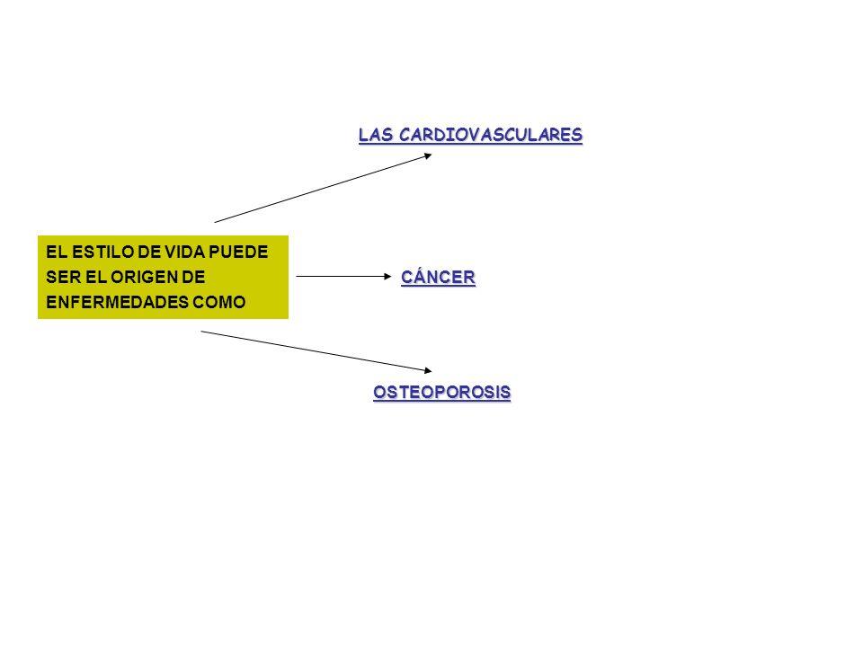 EL ESTILO DE VIDA PUEDE SER EL ORIGEN DE ENFERMEDADES COMO LAS CARDIOVASCULARES CÁNCER OSTEOPOROSIS