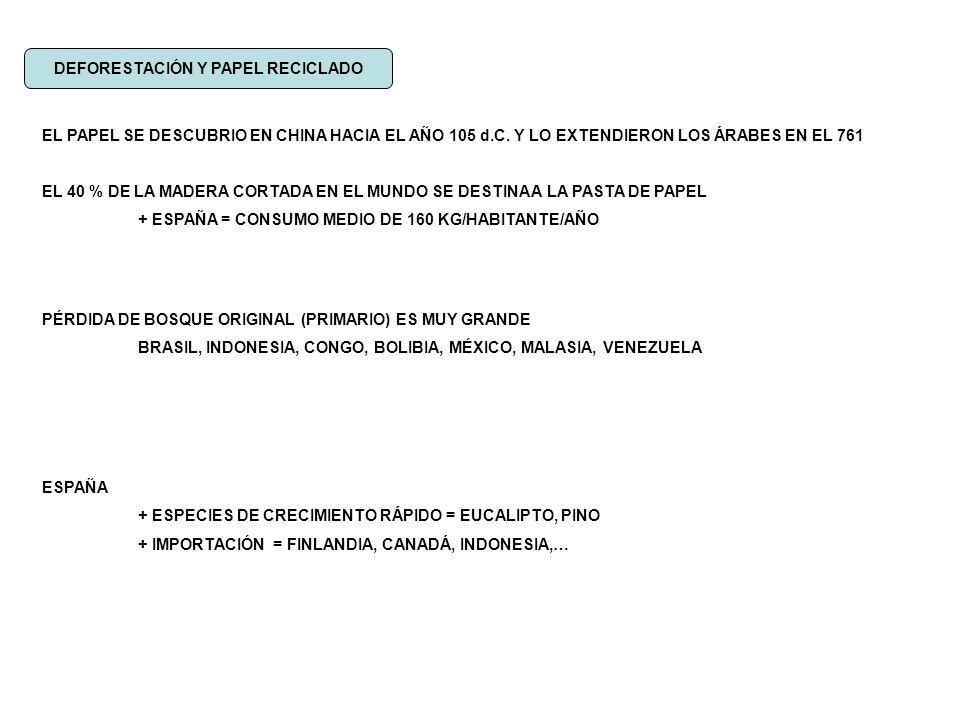 ESPAÑA IMPORTA UN 14 % DEL PAPEL PARA RECICLAR 7.000 PERIÓDICOS 13 ÁRBOLES DE medio tamaño IMPACTOS NO RECICLAR TALAS DE ÁRBOLES Y CONTAMINACIÓN AGUA (productos de deshecho)