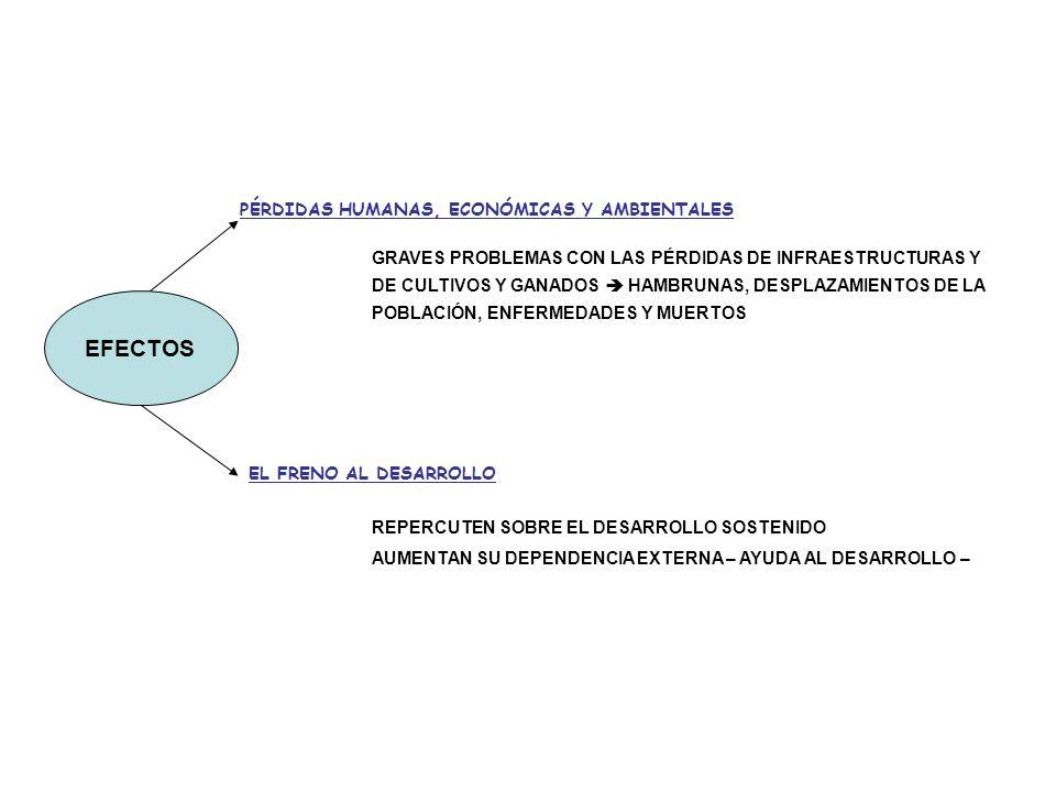 EFECTOS PÉRDIDAS HUMANAS, ECONÓMICAS Y AMBIENTALES GRAVES PROBLEMAS CON LAS PÉRDIDAS DE INFRAESTRUCTURAS Y DE CULTIVOS Y GANADOS HAMBRUNAS, DESPLAZAMIENTOS DE LA POBLACIÓN, ENFERMEDADES Y MUERTOS EL FRENO AL DESARROLLO REPERCUTEN SOBRE EL DESARROLLO SOSTENIDO AUMENTAN SU DEPENDENCIA EXTERNA – AYUDA AL DESARROLLO –
