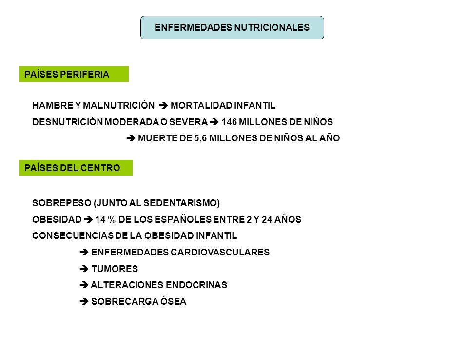 ENFERMEDADES NUTRICIONALES PAÍSES PERIFERIA HAMBRE Y MALNUTRICIÓN MORTALIDAD INFANTIL DESNUTRICIÓN MODERADA O SEVERA 146 MILLONES DE NIÑOS MUERTE DE 5