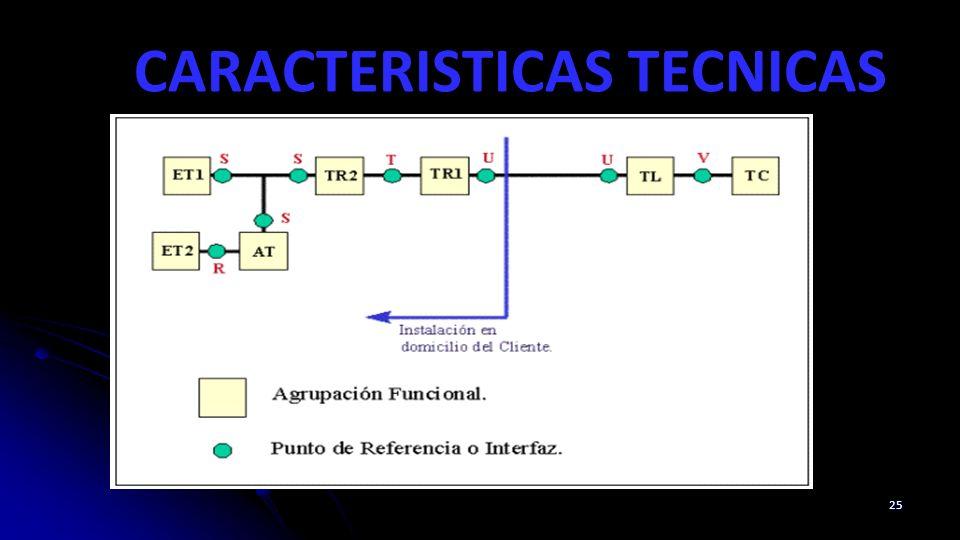 CARACTERISTICAS TECNICAS 25