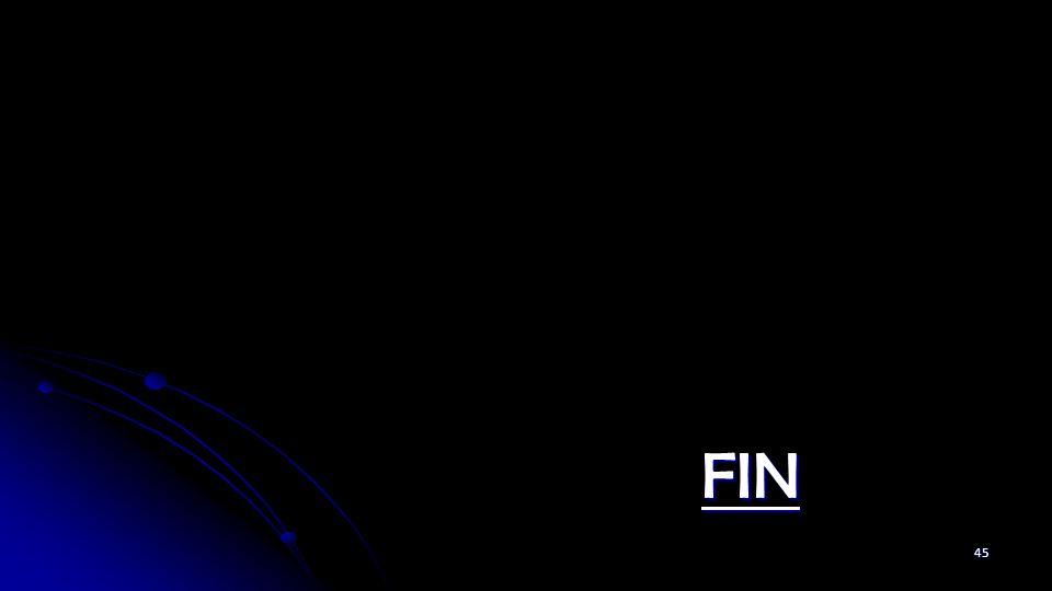 FIN 45