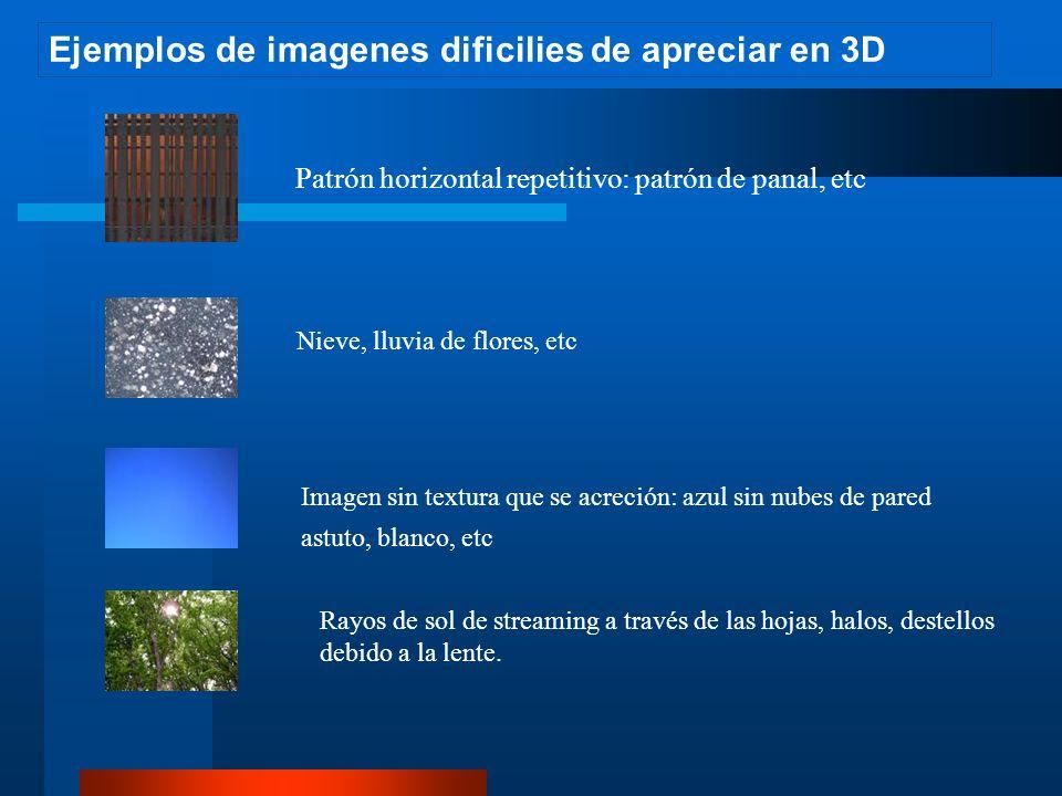 Ejemplos de imagenes dificilies de apreciar en 3D Patrón horizontal repetitivo: patrón de panal, etc Nieve, lluvia de flores, etc Rayos de sol de streaming a través de las hojas, halos, destellos debido a la lente.