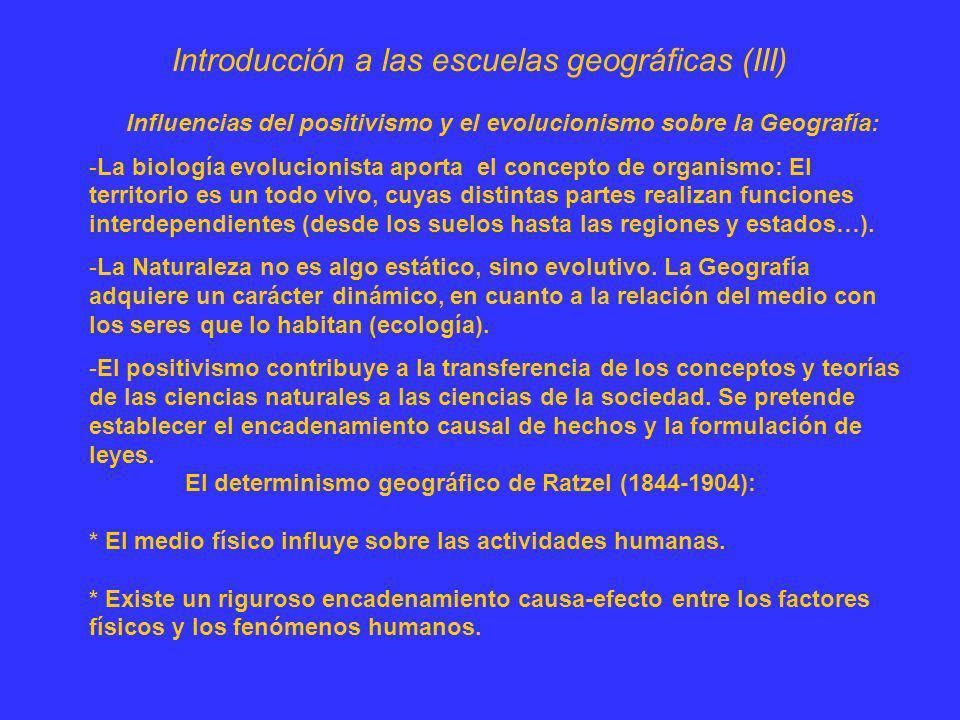 Introducción a las escuelas geográficas (III) Influencias del positivismo y el evolucionismo sobre la Geografía: -La biología evolucionista aporta el