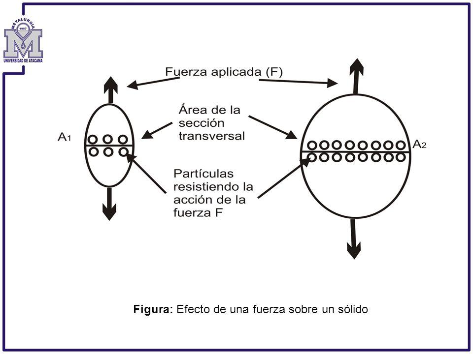 La fuerza interna de reacción afecta los enlaces que mantienen unidas a las partículas del sólido, produciendo fuerzas entre ellos.