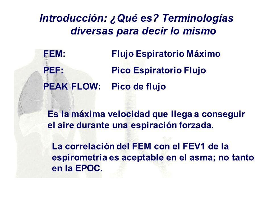 Introducción: ¿Qué es? Terminologías diversas para decir lo mismo FEM: Flujo Espiratorio Máximo PEF: Pico Espiratorio Flujo PEAK FLOW: Pico de flujo E