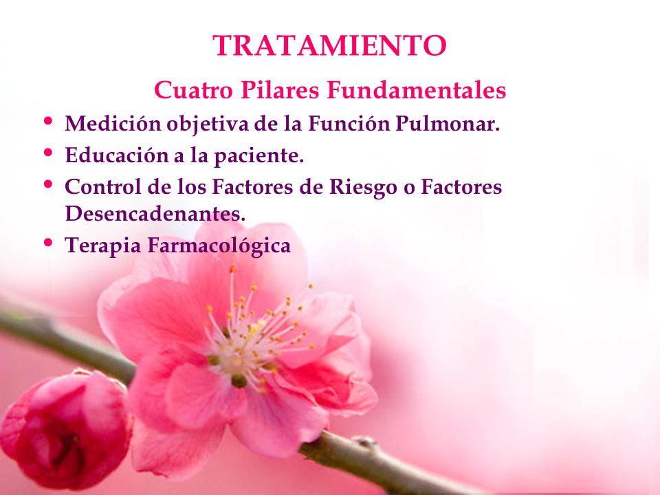TRATAMIENTO Cuatro Pilares Fundamentales Medición objetiva de la Función Pulmonar. Educación a la paciente. Control de los Factores de Riesgo o Factor