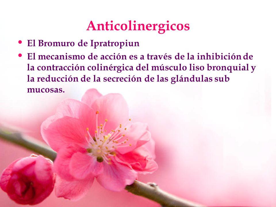 Anticolinergicos El Bromuro de Ipratropiun El mecanismo de acción es a través de la inhibición de la contracción colinérgica del músculo liso bronquia