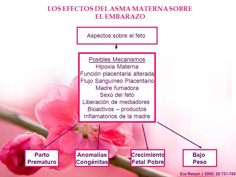 LOS EFECTOS DEL ASMA MATERNA SOBRE EL EMBARAZO Posibles Mecanismos Hipoxia Materna Función placentaria alterada Flujo Sanguíneo Placentario Madre fuma