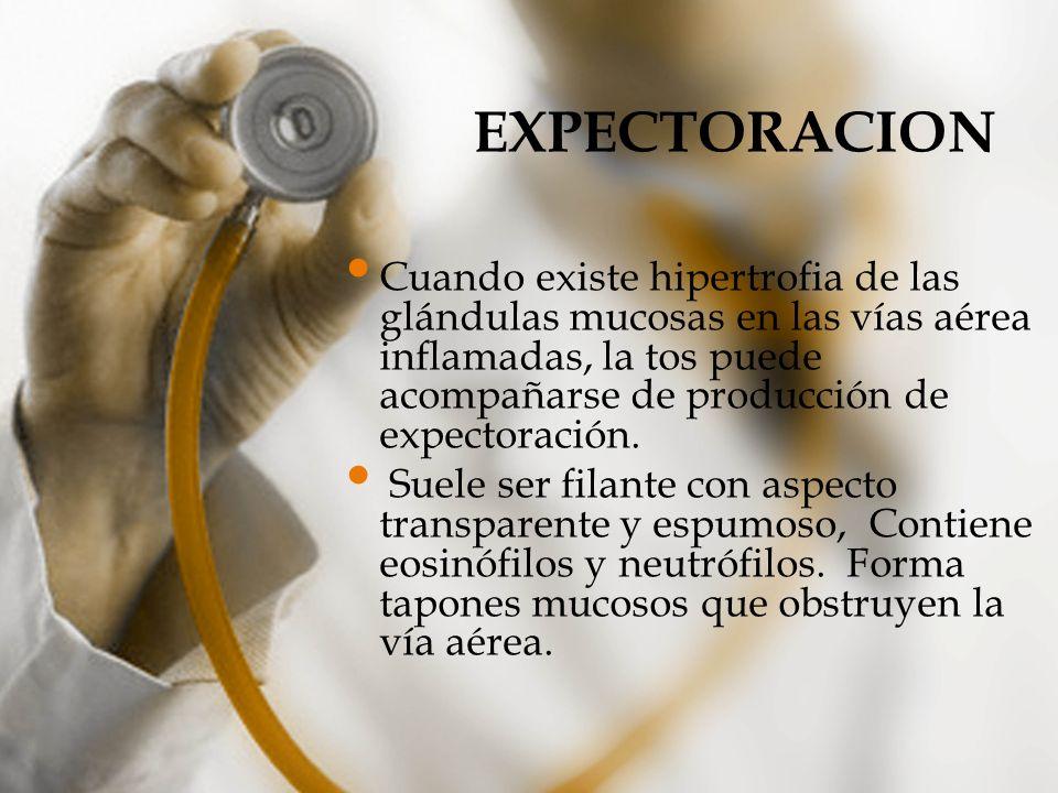 EXPECTORACION Cuando existe hipertrofia de las glándulas mucosas en las vías aérea inflamadas, la tos puede acompañarse de producción de expectoración
