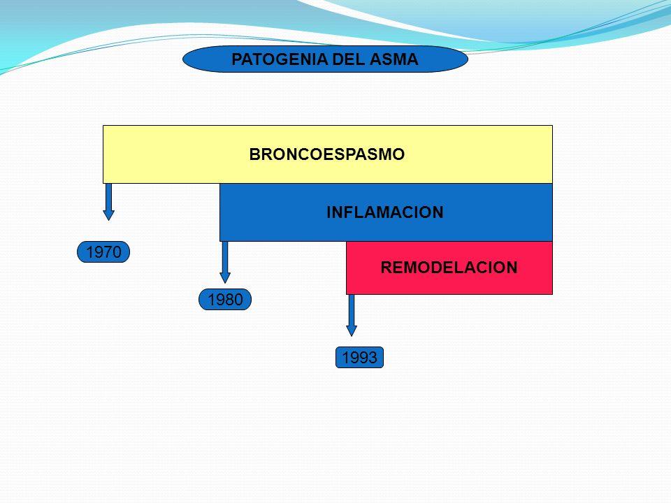 BRONCOESPASMO INFLAMACION REMODELACION 1970 1980 1993 PATOGENIA DEL ASMA