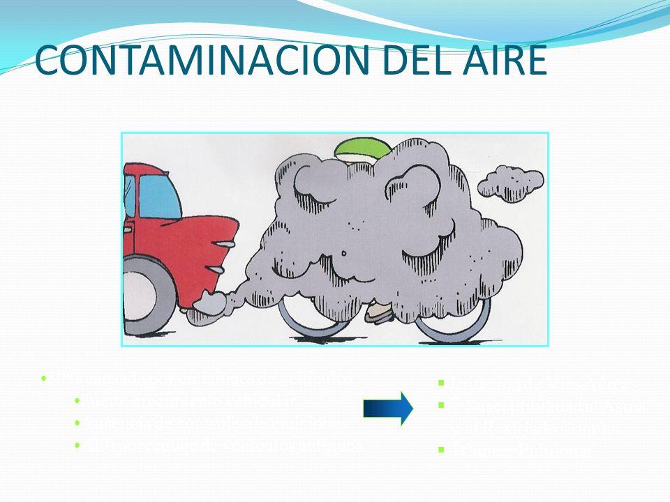CONTAMINACION DEL AIRE 80% causada por emisiones de vehículos Fuerte crecimiento vehicular Ausencia de controles de emisiones Alto porcentaje de vehíc