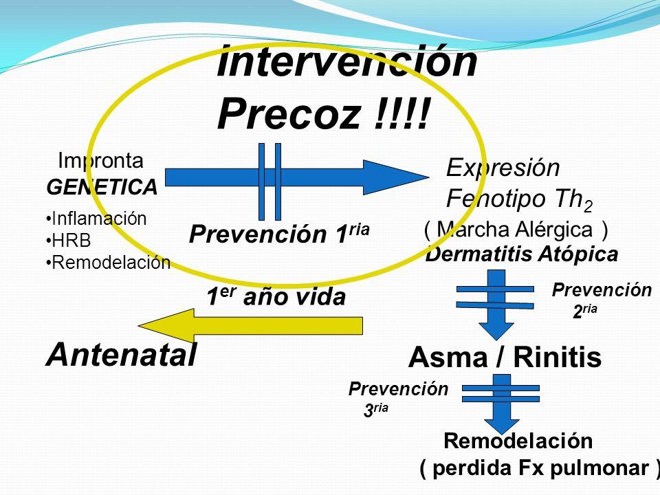 Impronta GENETICA Expresión Fenotipo Th 2 ( Marcha Alérgica ) Dermatitis Atópica Asma / Rinitis Remodelación ( perdida Fx pulmonar ) Prevención 2 ria