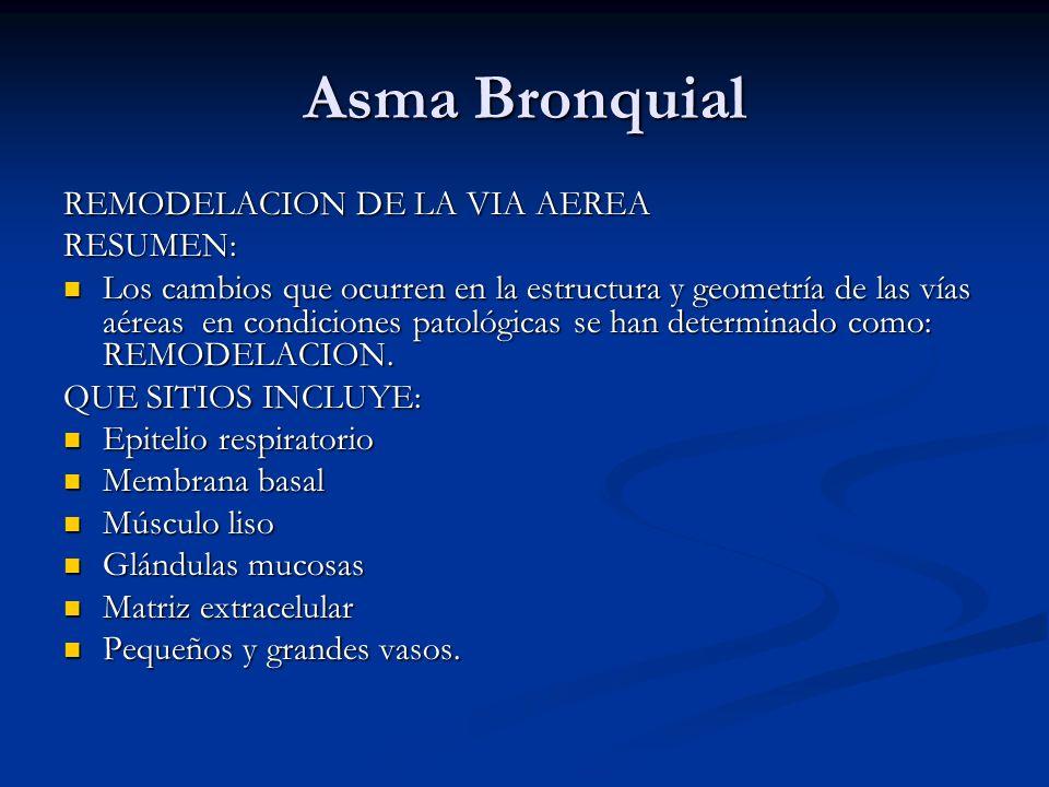 Asma Bronquial REMODELACION DE LA VIA AEREA RESUMEN: Los cambios que ocurren en la estructura y geometría de las vías aéreas en condiciones patológica