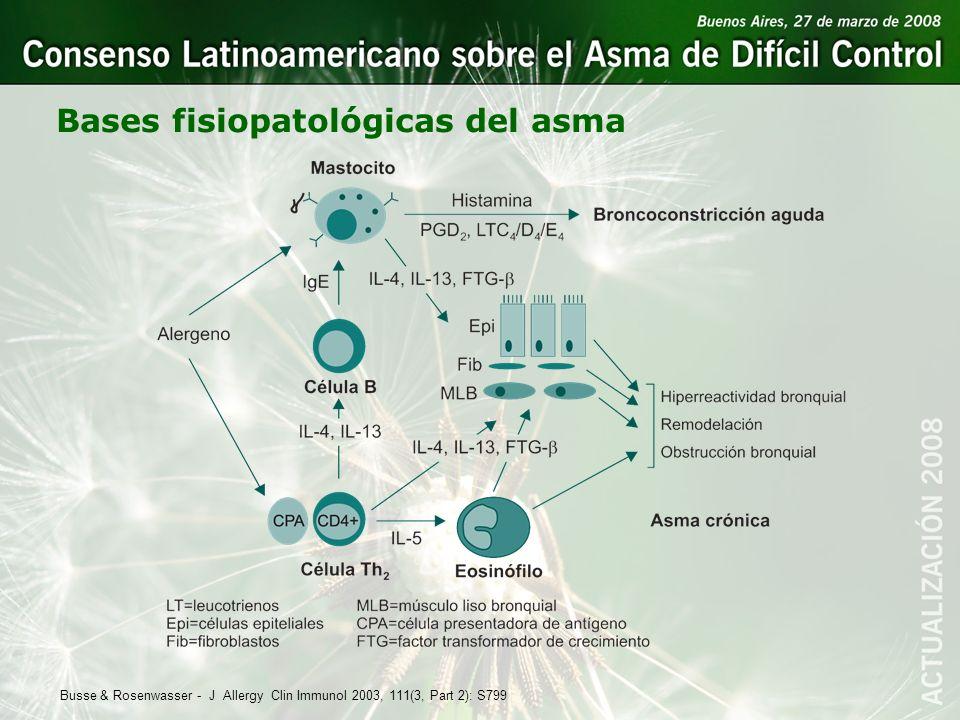 Bases fisiopatológicas del asma Busse & Rosenwasser - J Allergy Clin Immunol 2003, 111(3, Part 2): S799