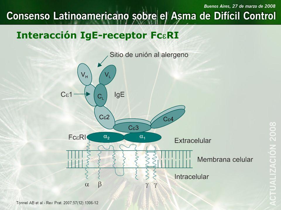 Interacción IgE-receptor FcRI Tonnel AB et al - Rev Prat. 2007;57(12):1306-12