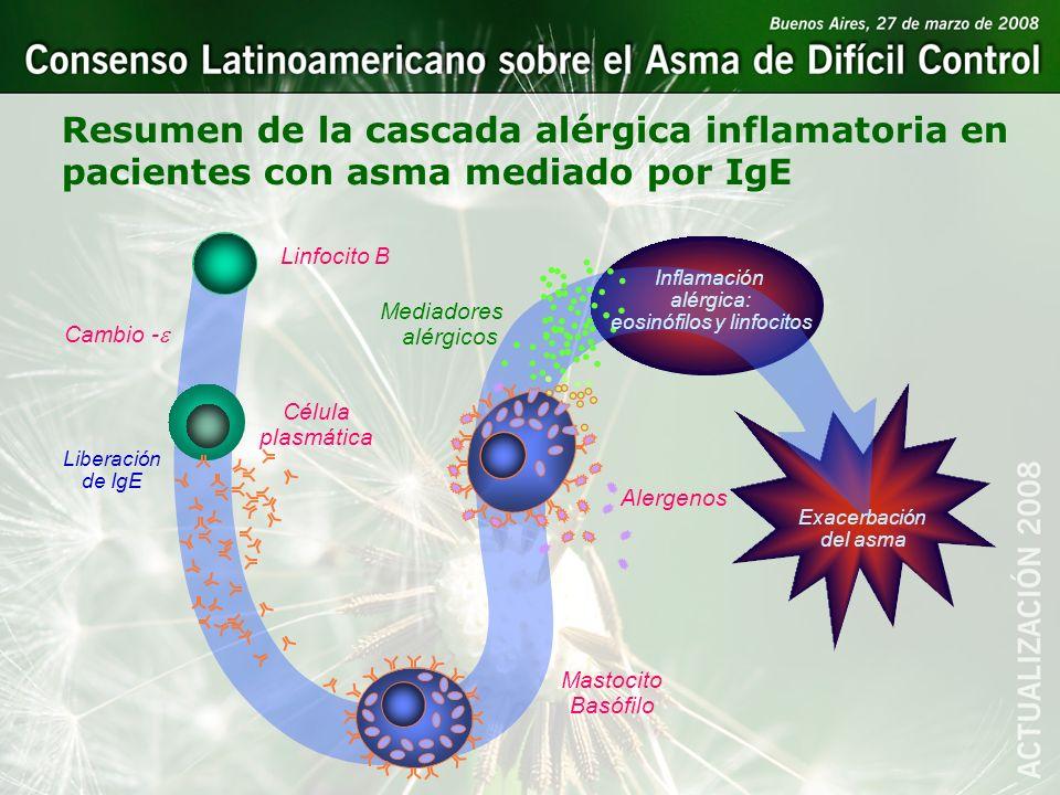 Resumen de la cascada alérgica inflamatoria en pacientes con asma mediado por IgE Célula plasmática Linfocito B Cambio - Alergenos Mastocito Basófilo