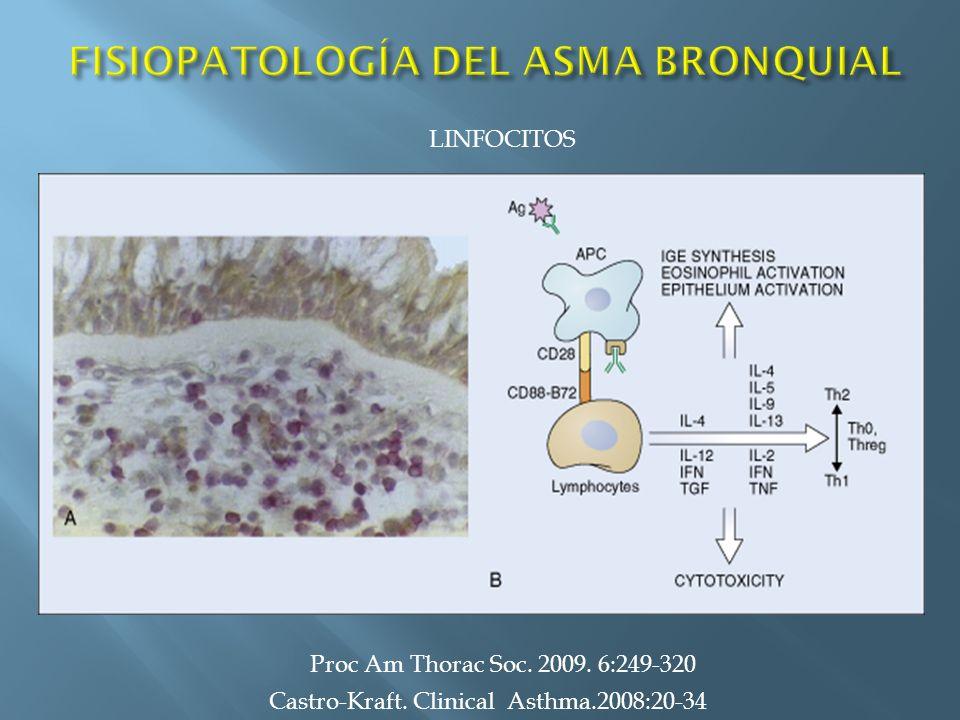 Castro-Kraft. Clinical Asthma.2008:20-34 LINFOCITOS Proc Am Thorac Soc. 2009. 6:249-320