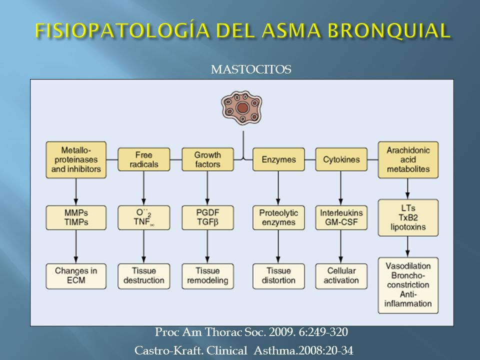 Castro-Kraft. Clinical Asthma.2008:20-34 MASTOCITOS Proc Am Thorac Soc. 2009. 6:249-320